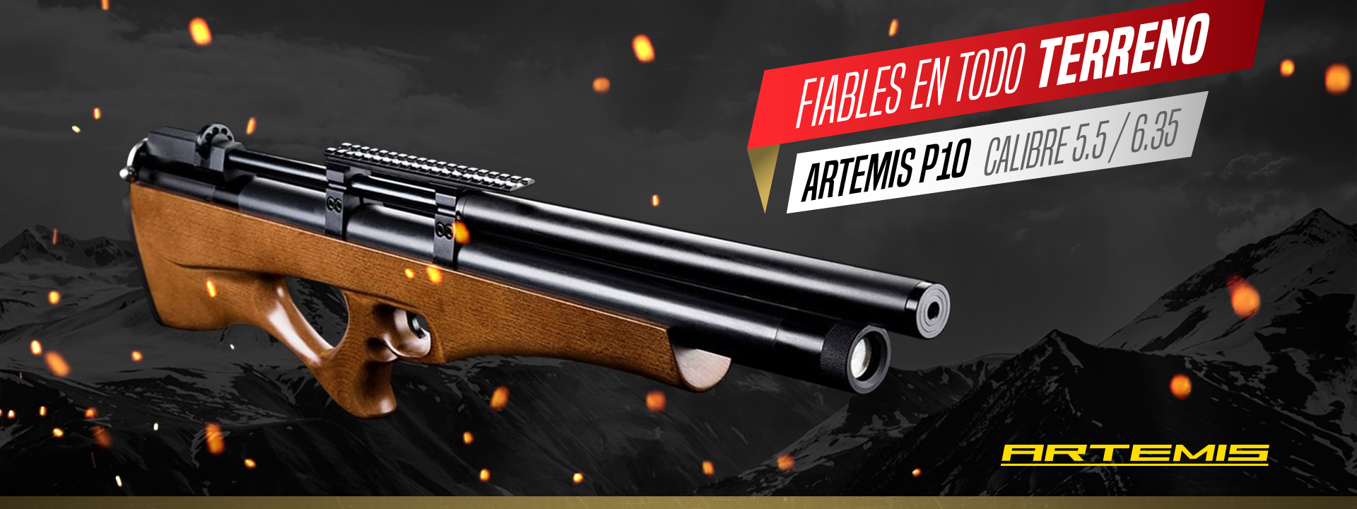 artemis-p10